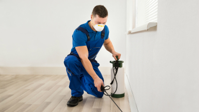 Aspects To Have In Mind When Choosing The Best Pest Control Provider