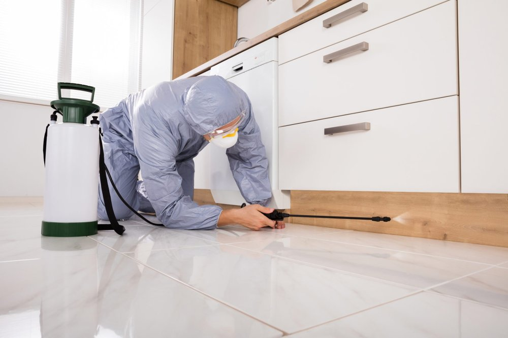 Reasons why you need a Professional Pest Control in Fort Mill SC.